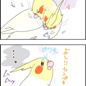 ユニvs羽毛