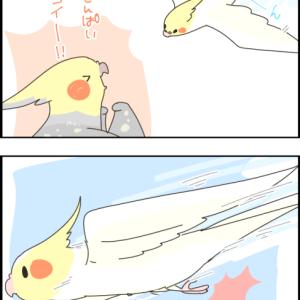 飛ぶのが上手いユニ