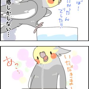 ドジっ子ニュー