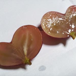 ハート型になった双子ブドウの考察