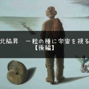 『北脇昇 一粒の種に宇宙を視る』後編 私はどこへ行くのか?