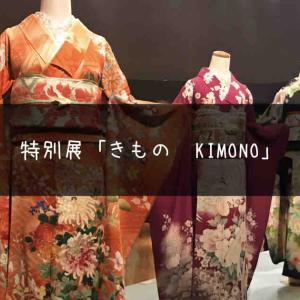 特別展「きもの KIMONO」で学ぶ着物の歴史と人々の命の輝き
