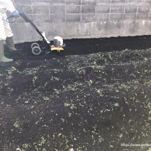 [家庭菜園2020]畑じまいで今年の家庭菜園もおしまい