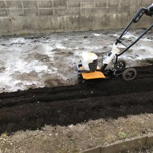 [2021家庭菜園]乾燥剤の石灰を撒いて耕運機始動〜