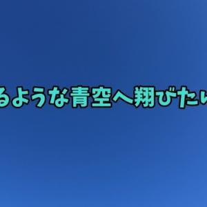 ねこのきもち 茶トラ猫の恋太郎と私 残念と思うことが多いね編