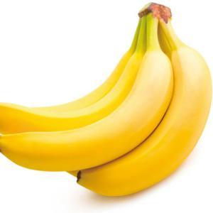 8月7日 バナナの日編 ねこのきもち 茶トラ猫の恋太郎と私