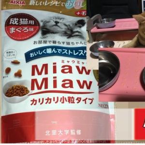 ミャウミャウキャットフード編 ねこのきもち 茶トラ猫の恋太郎と私