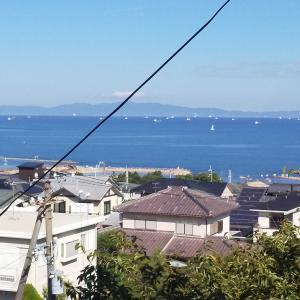 台風避難 大阪湾にヨットがいるのが異様