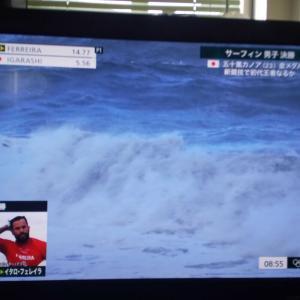 柔道の審判はできますが サーフィンはわかりません
