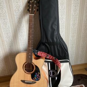 初心者が弾きやすいギター