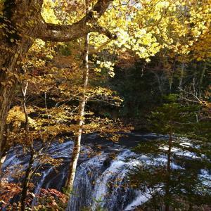 渓谷の秋♪