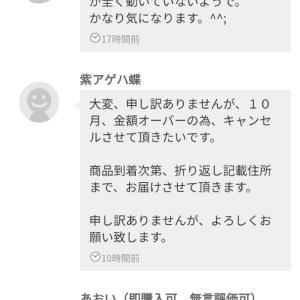 メルカリ(音沙汰無し)