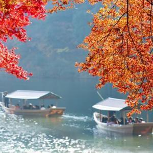 【京都 嵐山】嵐山・嵯峨野周辺で秋の美しさに触れるスポット総まとめ