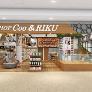 ネコちゃんと触れ合いながらカフェでくつろげる「ペットショップCoo&RIKUイーアス沖縄豊崎店」