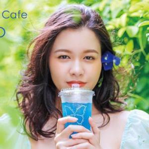 バタフライピーの世界観が体験できる「Butterflypea Cafe AOIYO」が浦添PARCO CITYに期間限定オープン