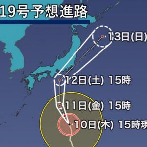 台風の被害と保険