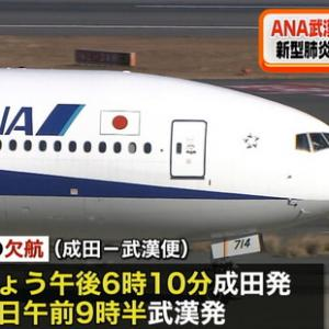 武漢に飛ぶ救援機