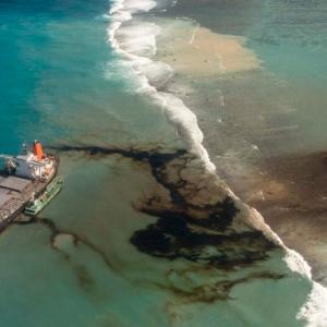 モーリシャスが環境非常事態を宣言