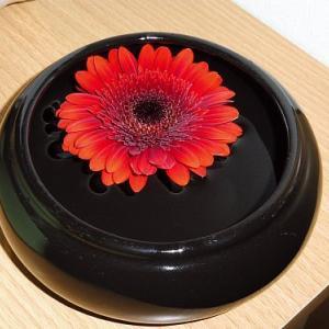 久しぶりに、浮き花