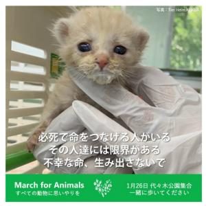 """""""明日、すべての動物たちの為に声をあげます"""""""