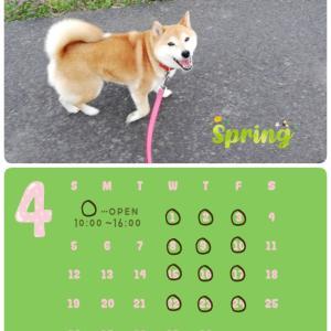 ReBON4月のカレンダー*⋆✈