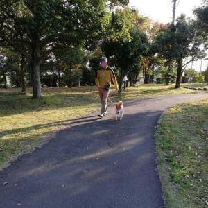 ワンワンワン犬の日⤴︎⤴