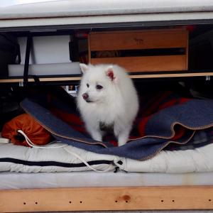 【出発編】車中泊そのものが目的の車中泊の旅に出てみたんだ