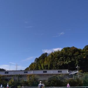 天気よし、テニスよし