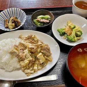 今日マーボー豆腐よ