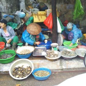 定年でもベトナム。ハノイで始める、お仕事日記 51 - 小雨の中の市場(2019年9月19日/19日め)