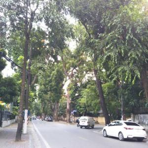 定年でもベトナム。ハノイで始める、お仕事日記 109 - 隣りの国は仲が悪いね。(2019年10月12日/42日め)