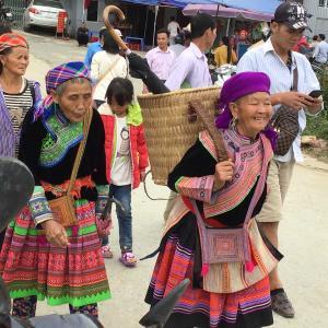 定年でもベトナム。ハノイで始める、お仕事日記 143 - 家畜市場①(2019年10月20日/20日め)