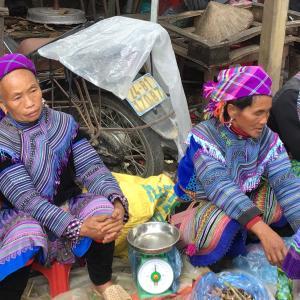 定年でもベトナム。ハノイで始める、お仕事日記 147 - 花モン族だらけ(2019年10月20日/50日め)