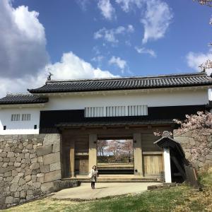 コロナでも福島。満開の桜の下、城を仰ぐ 2 - 白河小峰城跡・前御門から本丸御殿跡へ(2021年4月9日/1日め)