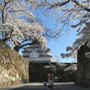 コロナでも福島。満開の桜の下、城を仰ぐ 25 - 会津武家屋敷(會津歴史資料館)(2021年4月10日/2日め)