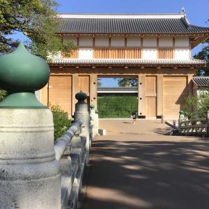 コロナでも茨城。ネモフィラの丘と弘道館を訪ねて 7 - 大手門の子どもたち(2021年4月23日)