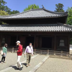 コロナでも足利。織姫神社と足利学校を訪ねて 2 - 足利学校(杏壇門と孔子廟)(2021年4月30日)