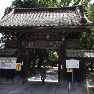 コロナでも足利。織姫神社と足利学校を訪ねて 8 - 鑁阿寺(御霊屋から北門へ)(2021年4月30日)