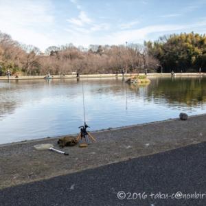 FISH ON! 王禅寺のジロー池で大物狙い2戦目!午後の3時間。