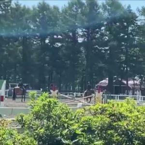 【北海道らしさ満点のメジャー観光スポット】ノーザンホースパーク)馬がテーマだが多彩なアトラクションで北海道を満喫できるテーマパーク