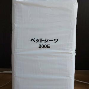 ペットシーツ200枚入り1円出品