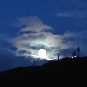 お月さまを連れて歩いてみませんか?