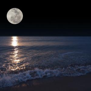 山羊座満月(月食) 超えるために築き上げる枠組みの集大成