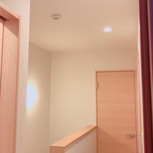 トイレと階段、廊下の大掃除