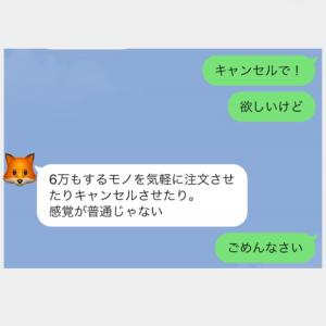 【寒がりさん必見】あったかグッズ⋆*⋆*⋆*