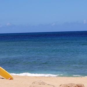 【JALマイルで行くハワイ】大人4人ビジネスクラス利用でかかった費用は…