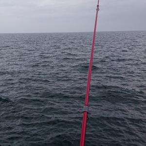 イカで噂の南防波堤