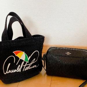 バッグの中身公開!40代主婦ミニマリストの極限まで荷物を減らしたバッグ