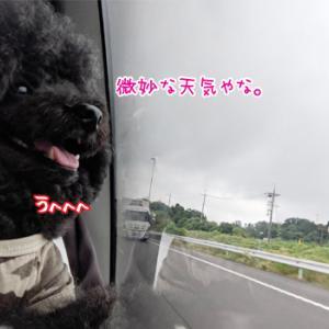 キャンカーぶらり旅☆古都奈良へ!!