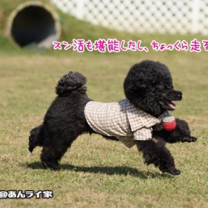 2019秋旅行☆あっという間にランチの時間!